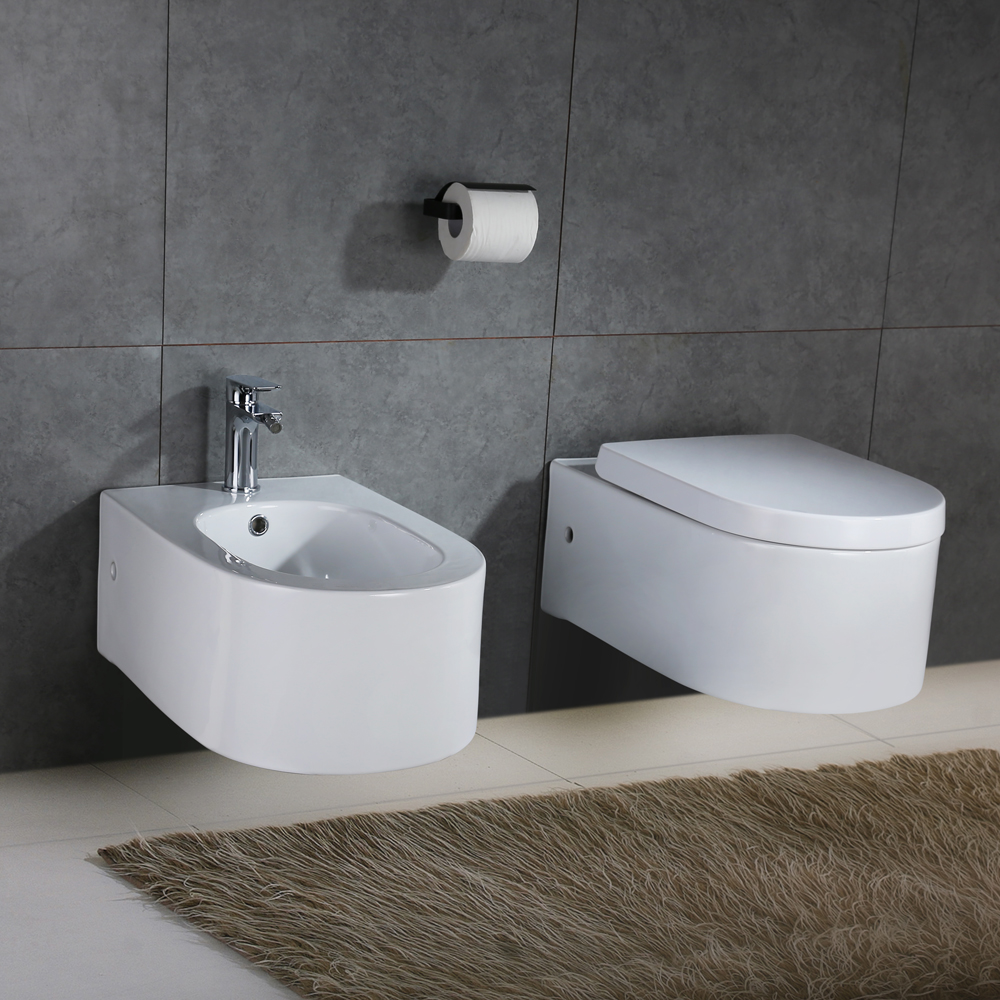 wandh nge wc sitz toilette wandmontage dusch wc mit softclose h nge bidet weiss ebay. Black Bedroom Furniture Sets. Home Design Ideas