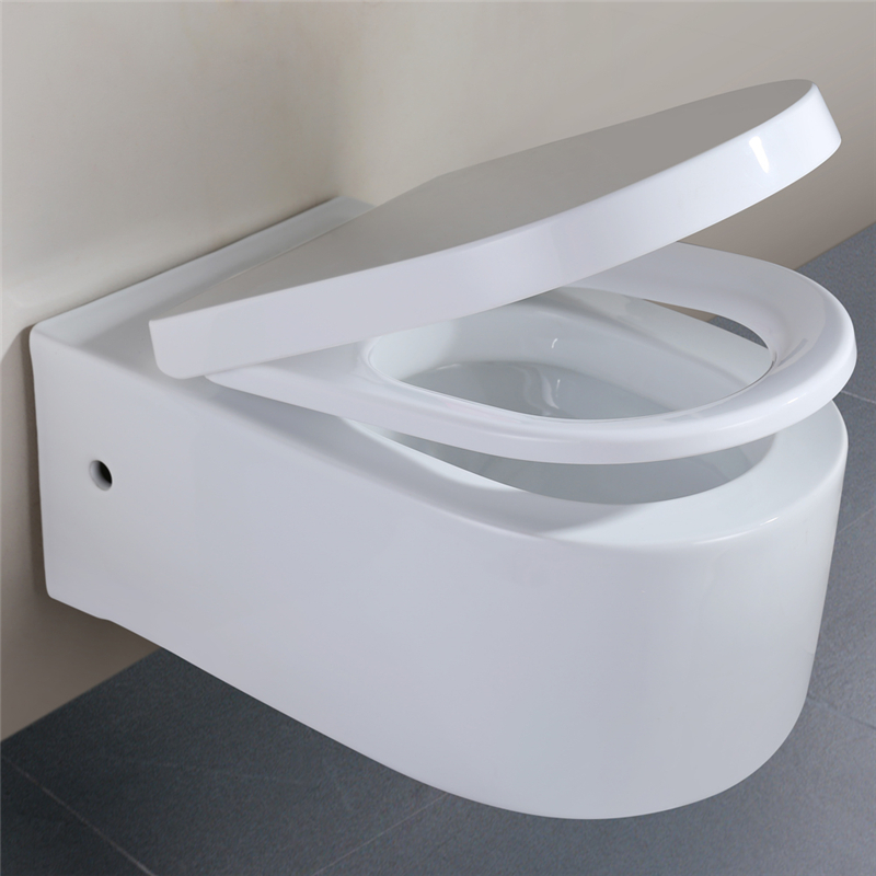 softclose wandh nge wc sitz toilette keramik wand h nge dusch wc design f r klo ebay. Black Bedroom Furniture Sets. Home Design Ideas